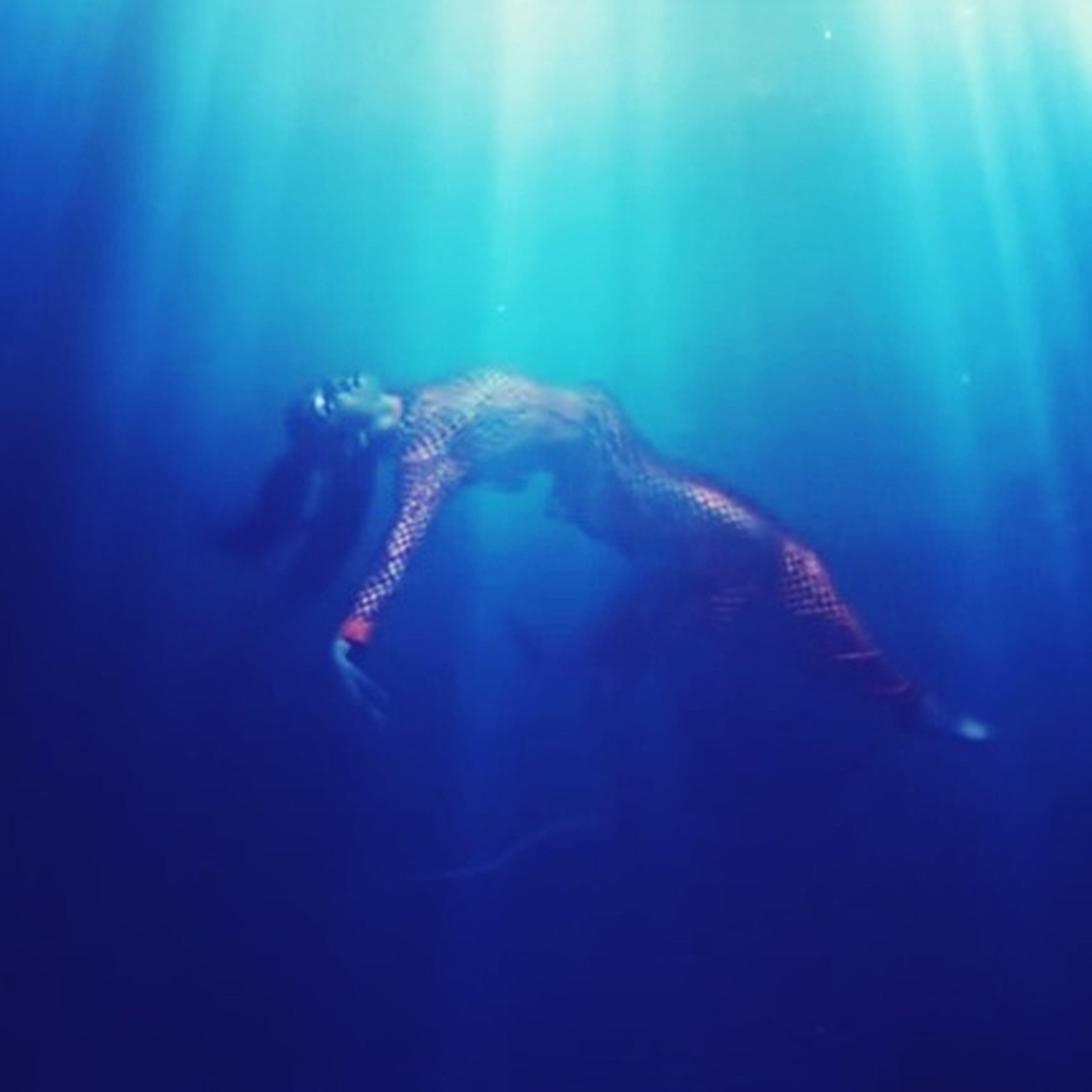 underwater, swimming, water, lifestyles, leisure activity, blue, sea, undersea, men, sea life, indoors, enjoyment, fish, aquarium, person, unrecognizable person, scuba diving, fun