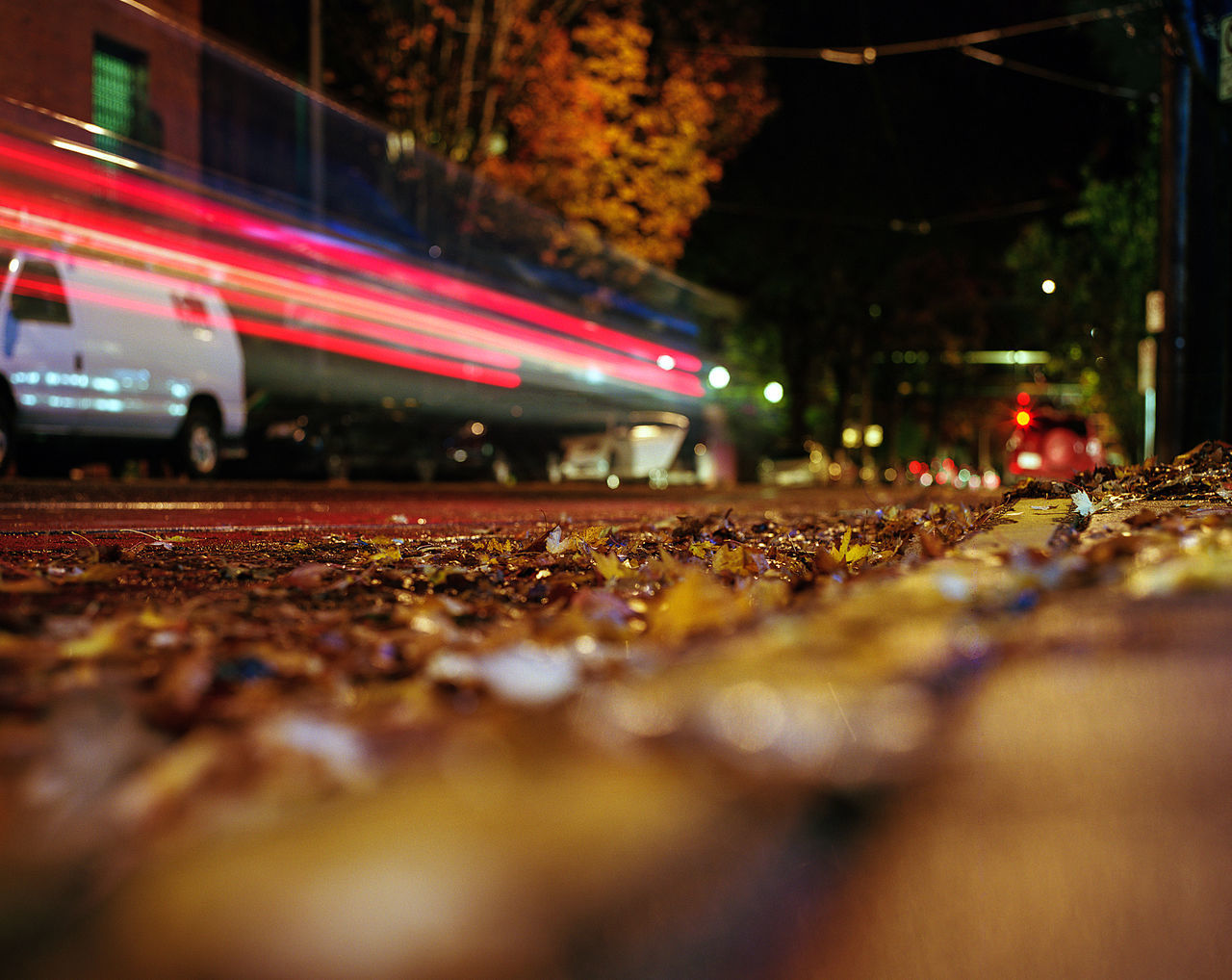 In the quiet of the night stillness can be found but so can the speed of light! Ahphotog Angelaholmphotography City City Street Diagonal Fall Colors Illuminated Leaves Light Streaks Long Exposure Low Angle View Night No People Outdoors Pavement Portland, OR Quiet Speed