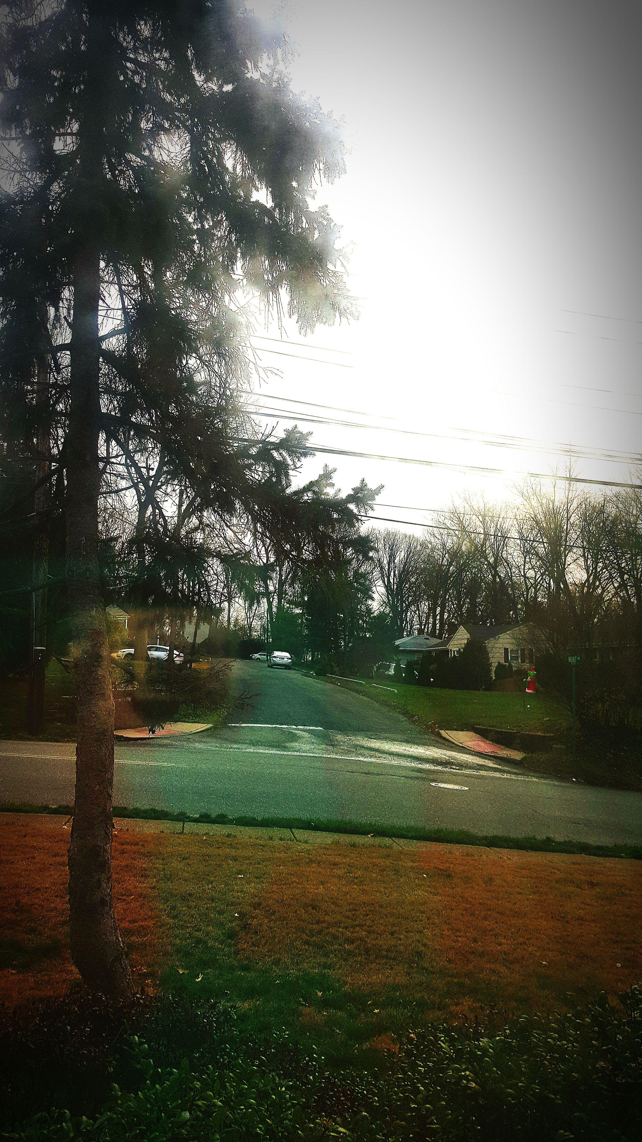transparent, transportation, drop, glass - material, wet, rain, window, car, tree, road, water, land vehicle, raindrop, vehicle interior, sky, season, mode of transport, windshield, weather, car interior