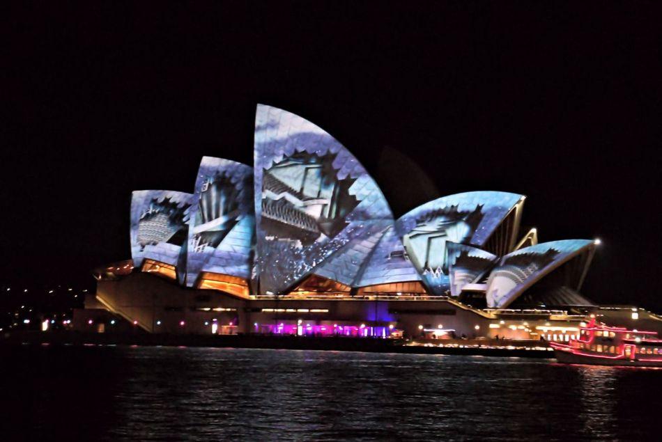 Sydney Opera House - Vivid Light Festival Architecture City Light Show Night Opra House Outdoors Sydney Opera House Sydney, Australia