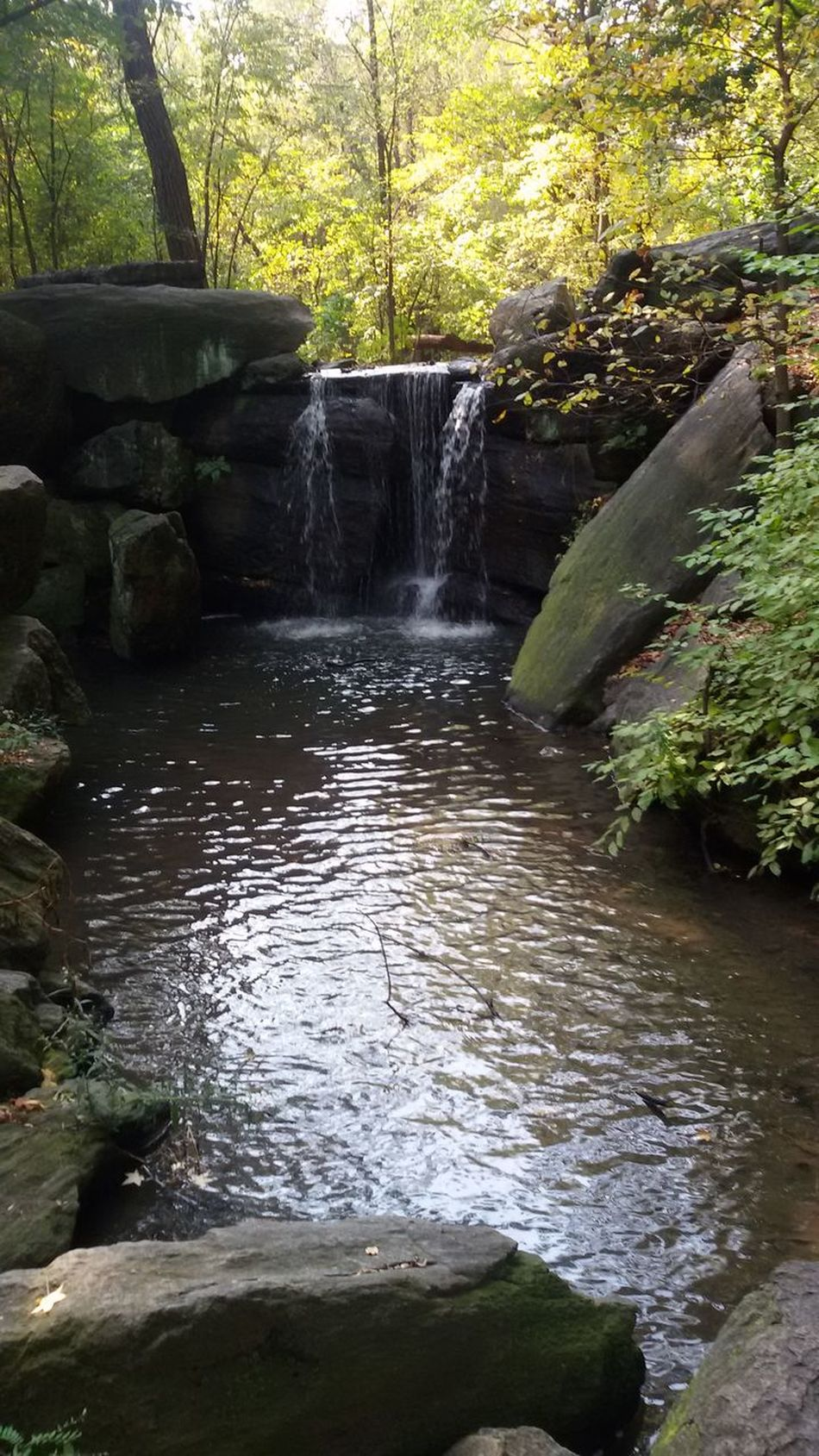 Central Park New York Waterfall Tree Nature Beauty In Nature In A City Water No People Running Water Freshness Nature In The City Samsungphotography Calm Water Calming Views Like Or Love It