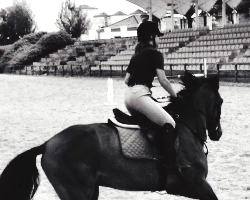 Enjoying Life That's Me Horseslife Horseslove ArtisteDesLibaux First Eyeem Photo