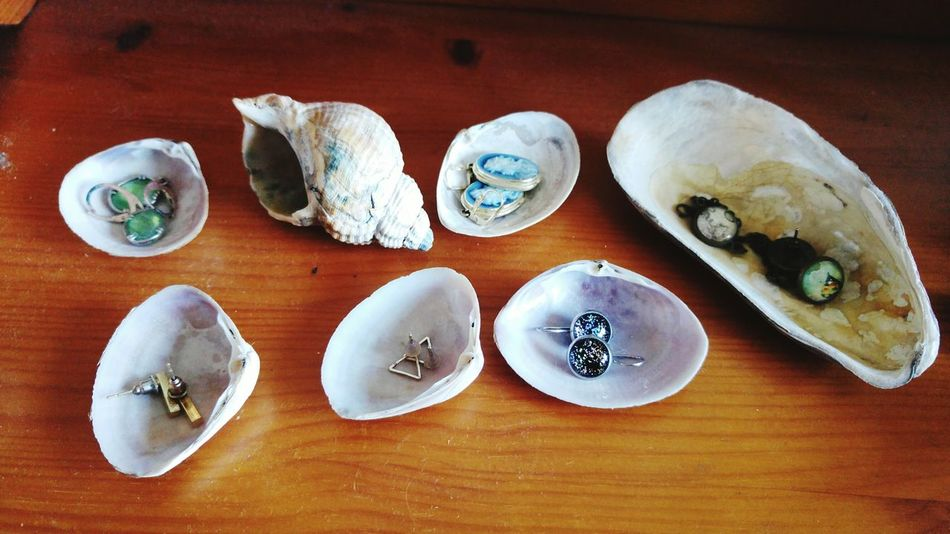 Indoors  No People Shells Sea Findings Findings In Nature Earrings Jewelry Alternative Use Beauty In Nature Shiny Washed Ashore 3XSPUnity