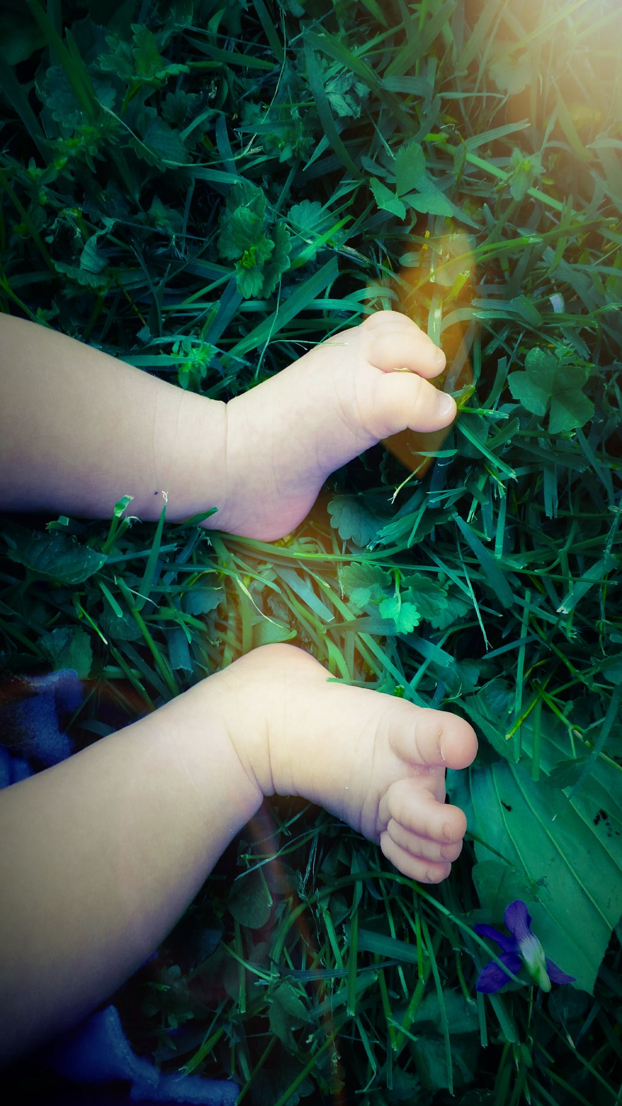 First time grass user. Human Body Part People Plant Close-up Outdoors Day Lifestyles Nature Explore Beauty In Nature Nature Rural Life Baby Babygirl Baby Feet Toes Indiana Milltown Green Purple Clover 小孩 Half Asian Spring Grass