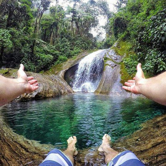 Nature Rainforest River Goodshot Green