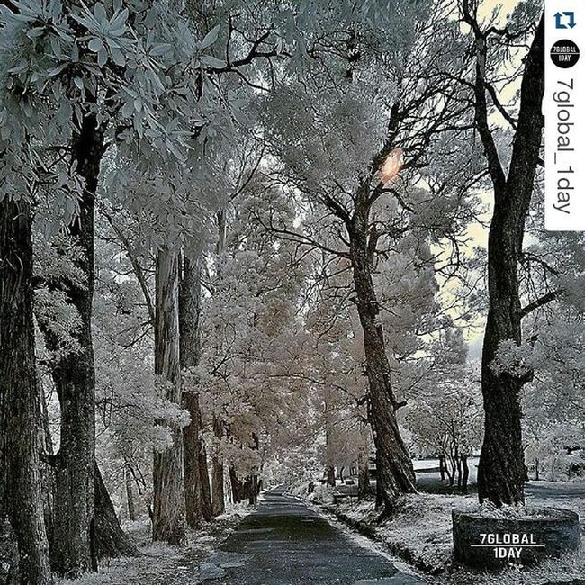 Repost @7global_1day with @repostapp ・・・ * 13/01/2016 Selection Today big congratulations to: . @timesofwander . > . . .***************************************** 🔱 Work chosen by @cristiana60 .••••••••••••••••••••••••••••••••••••••••• ➡️Stop 1 minute to see more amazing workshop of talented artist! •••••••••••••••••••••••••••••••••••••••••. Thanks for supporting @7global_1day and tagging your photos 7global_1day ⠀⠀ ⠀ •••••••••••••••••••••••••••••••••••••••••••••• ✳️ Visit and follow the hubs of same family: ➡️ @7edits_1day . ➡️ @7people_1day . ➡️ @7bnwcreation_1day . ➡️ @7pets_1day . ........................................................................... Incredoble_shot Allshots_ Exklusive_shot Euro_shot Elite_shotz World_shotz Global_shotz Superhubs_shot Ig_worldcub TAGDISTRICT *******************************************