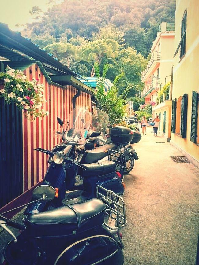 Urban Lifestyle Paraggi Italy