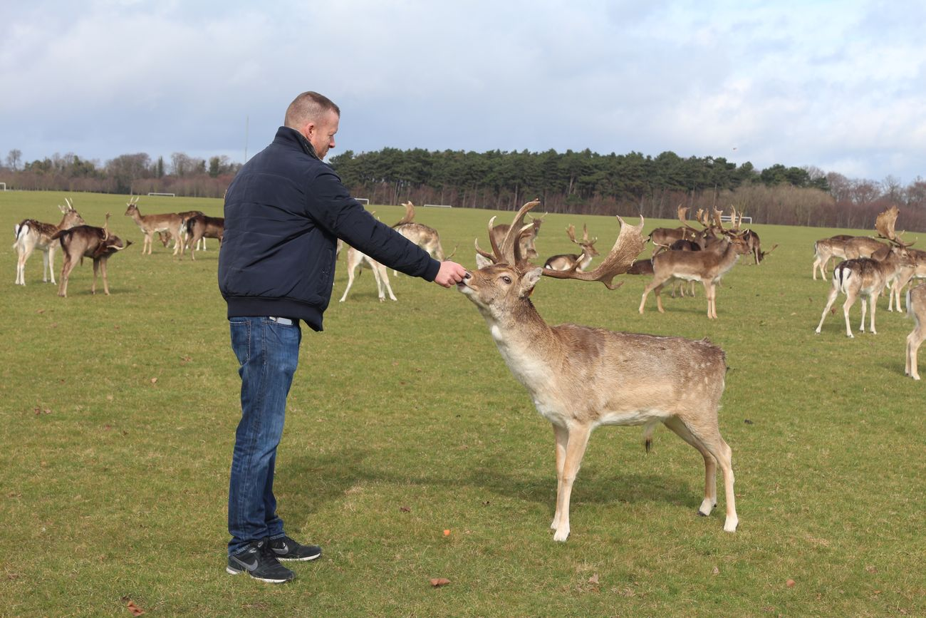 Deer Feeding  Feeding Deer! That's Me Check This Out Hello World Dublin Ireland Looking For Trouble