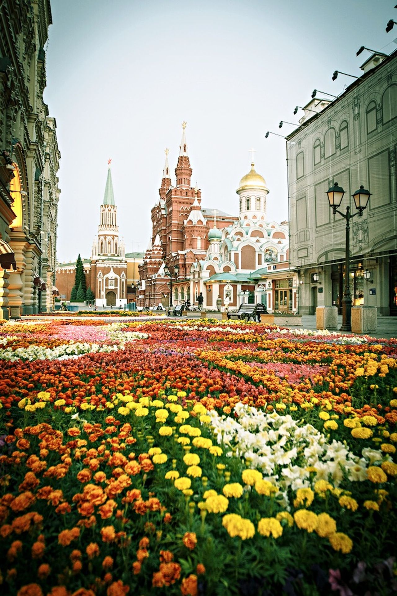 Moscow Russia Red Square Flowers Morning