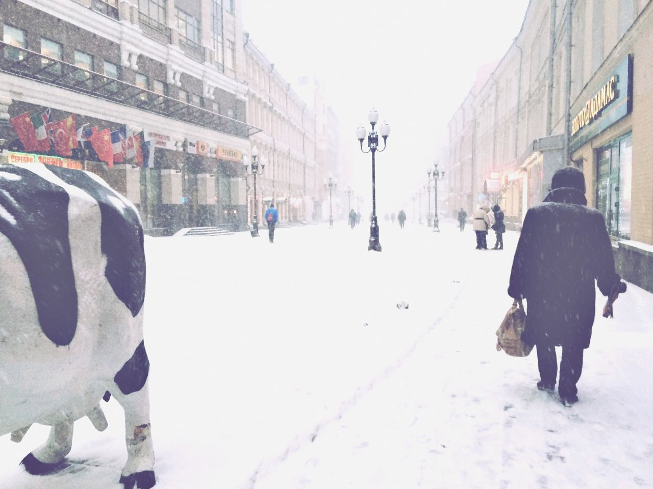 Russian Winter EyeEm Best Shots Streetphotography New Filters EyeEm 5.0 People Watching Snowing My Country In A Photo Deepfreeze Snapshots Of Life Women Around The World