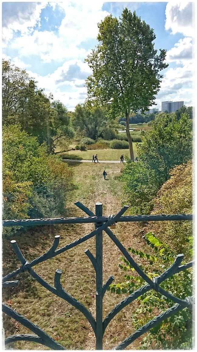 Parklife Parkscapes Babelsberger Park Potsdam Nature_perfection Naturelover Nature_collection