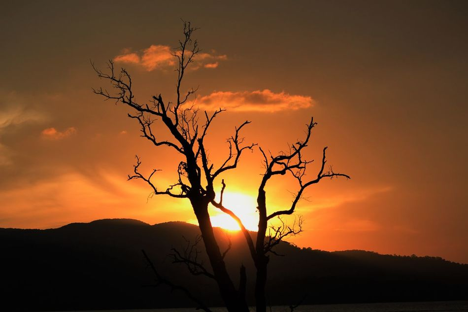 a view of sunset from an Andaman island Andamanislands Beauty In Nature Nature Lover Nature Photography Quiet Moments Serene Tranquil Outdoors Sunset Sunset Silhouettes Travel Photography