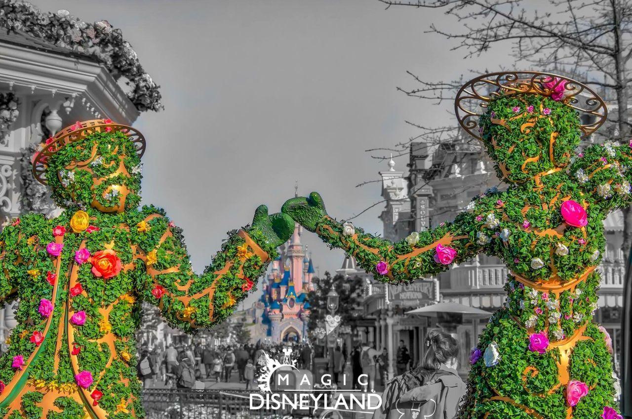Travel Destinations Disneyland Resort Paris Disneylandparis Disney Disneyland Paris Waltdisney Disneyland Flower Day Creativity