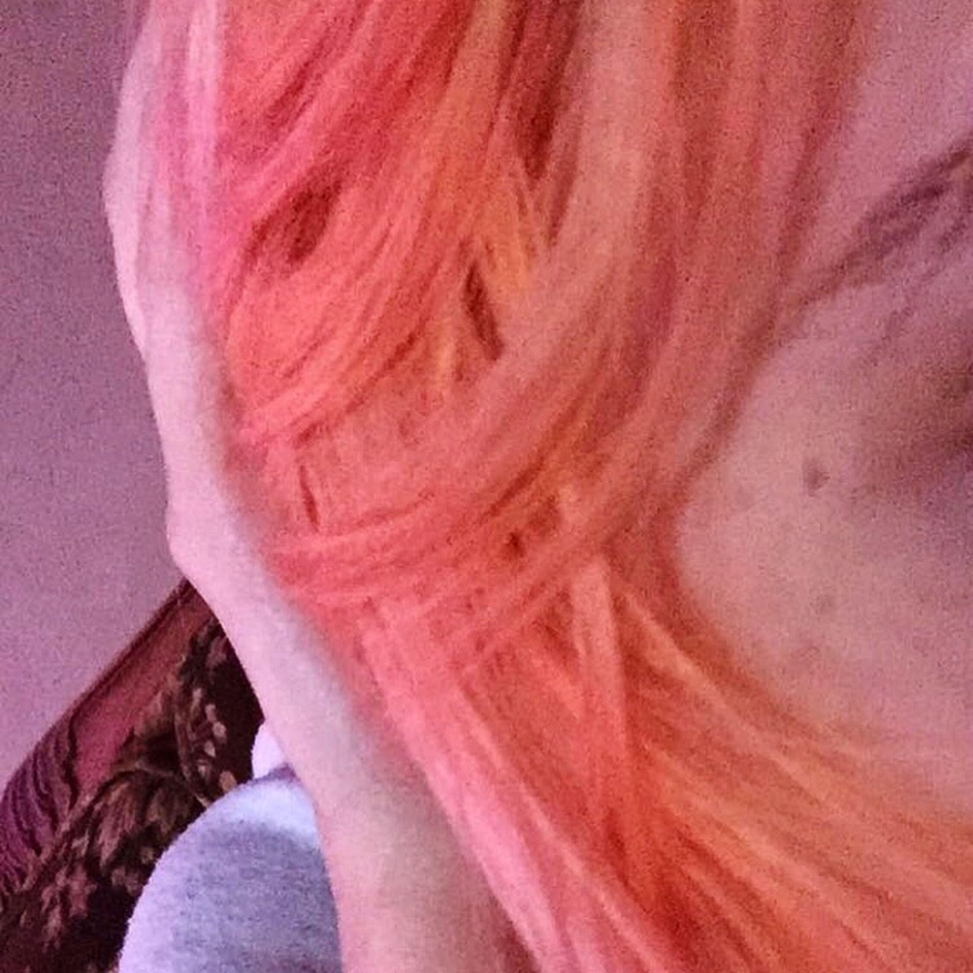 Coral Hair First Eyeem Photo