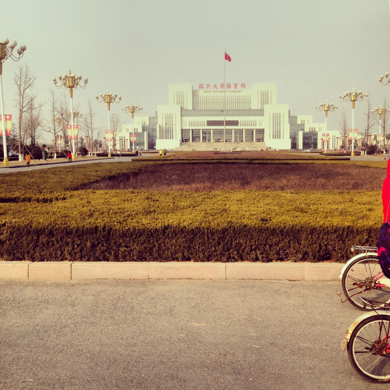 Architecture Bicycle Building Exterior Built Structure China City Day Going To School Government Land Vehicle Linyi No People Outdoors Riding Around Shandong Sky Transportation Tree University The Street Photographer - 2017 EyeEm Awards