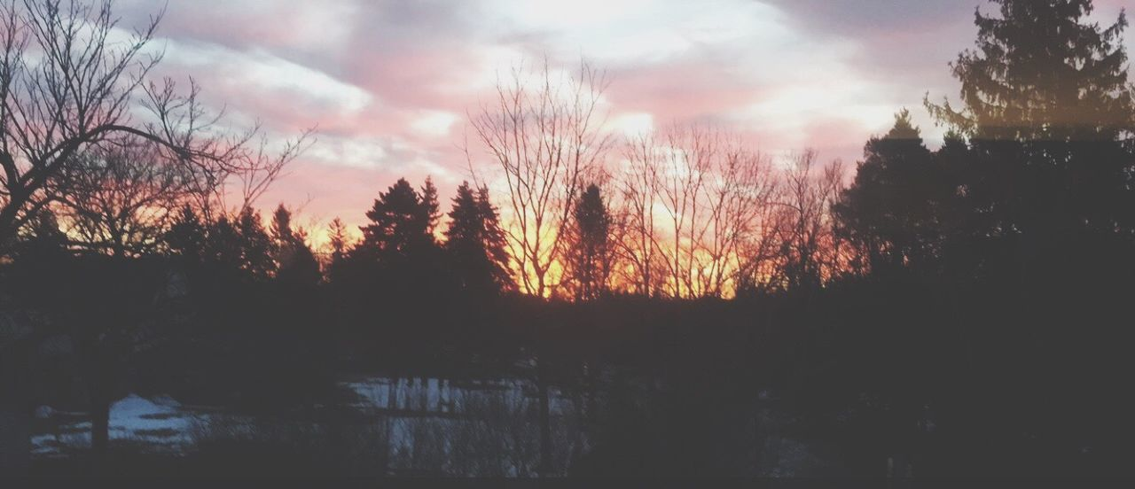 sky, nature, sunset, beauty in nature, tree, silhouette, no people, tranquility, scenics, tranquil scene, outdoors, scenery, water, day
