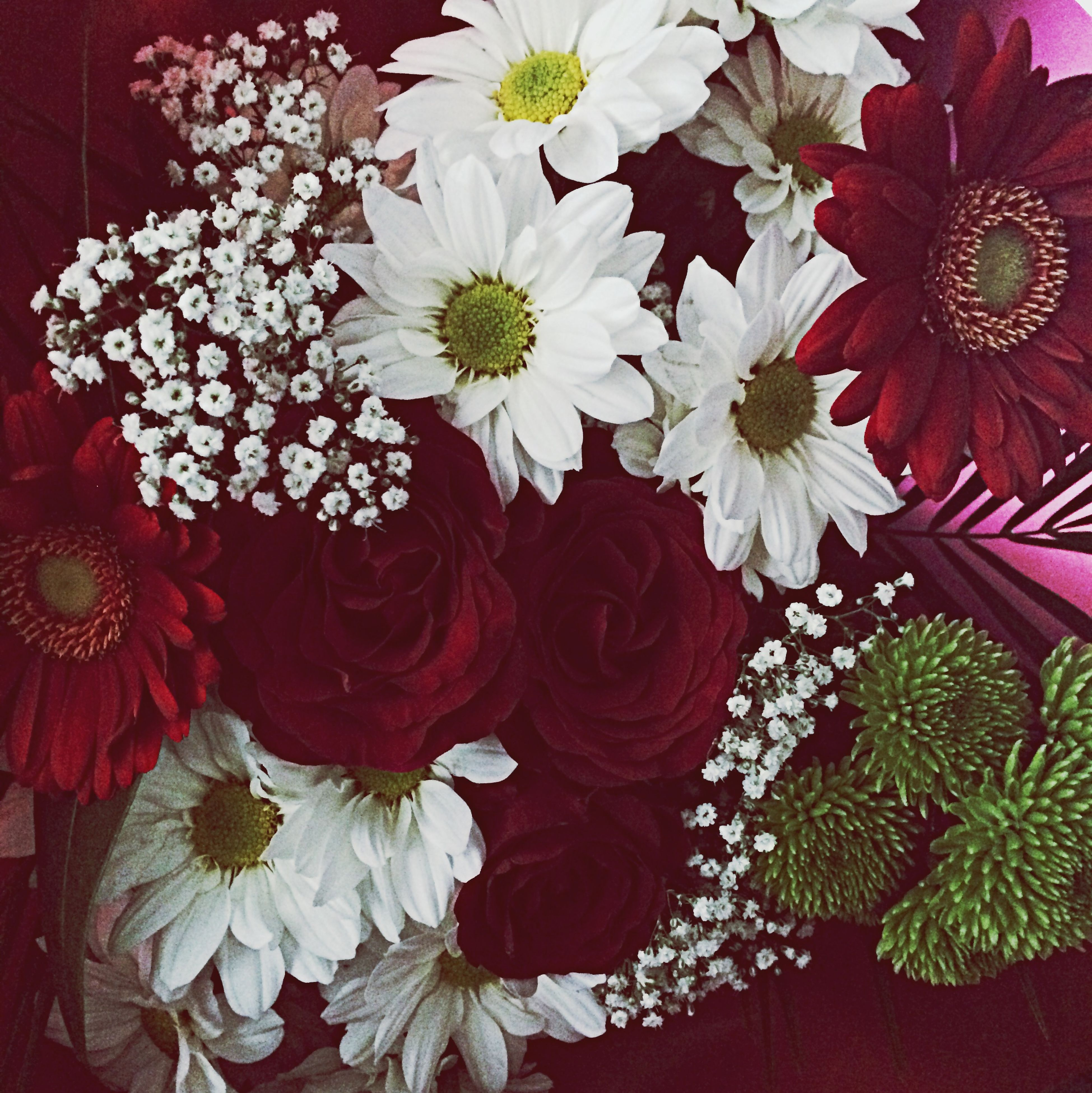 flower, freshness, petal, red, fragility, indoors, flower head, growth, beauty in nature, high angle view, nature, bouquet, plant, white color, blooming, bunch of flowers, full frame, no people, blossom, close-up