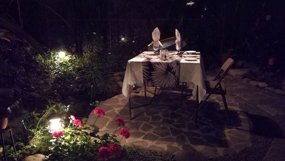 No People Plant Private Dinner Tranquility Tourism Night Photography Plant Growth Outdoors Messy Large Group Of Objects No People Outside