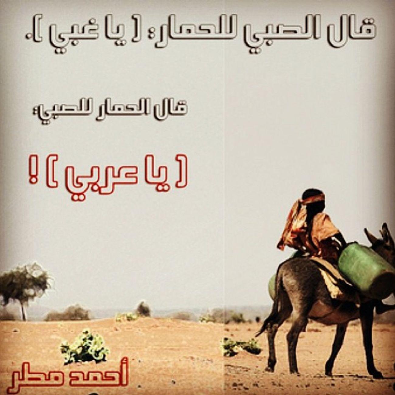 عربي احمد_مطر مشاتمه