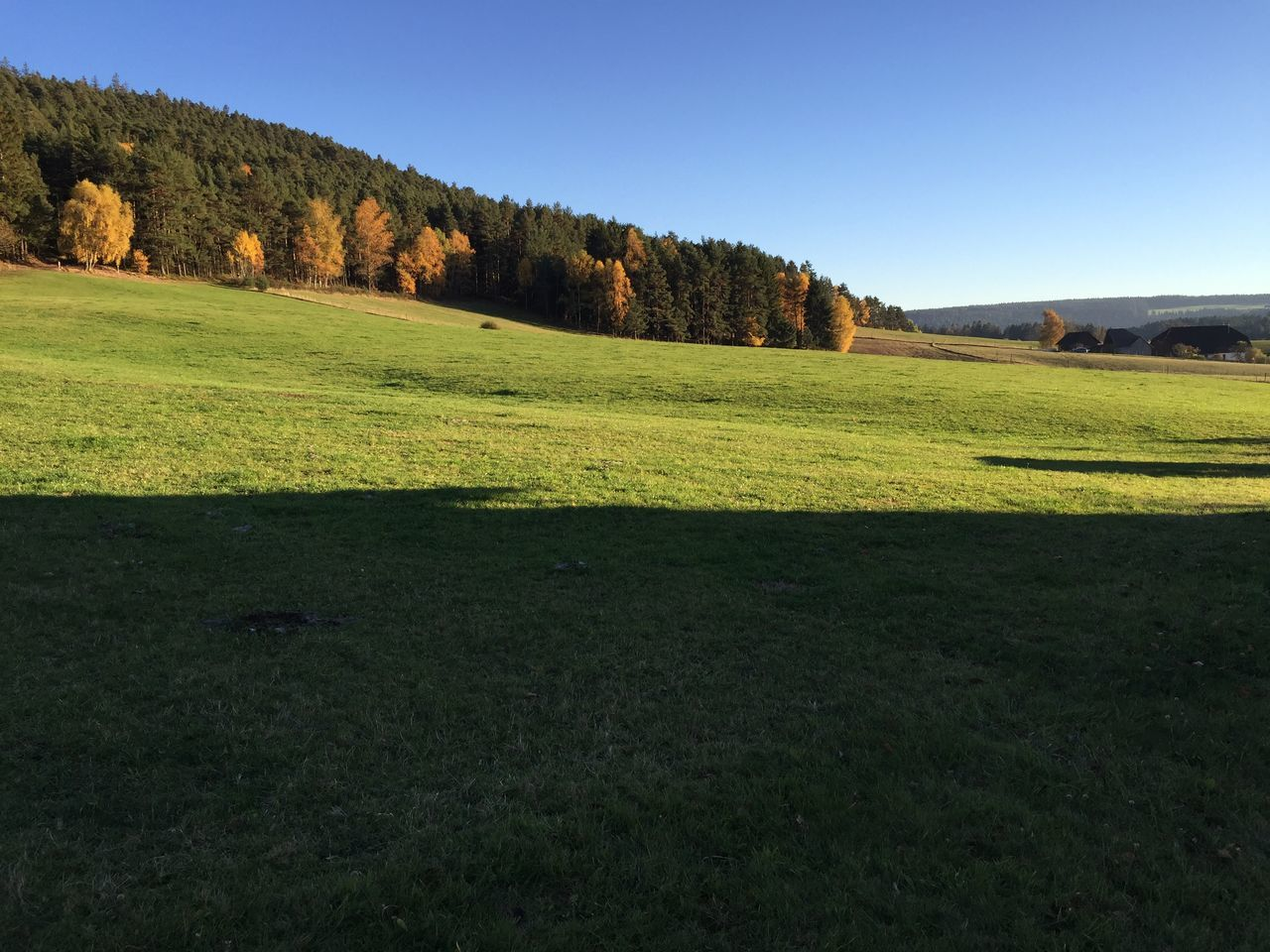 Panorama Sulzbach Sulzbach Panoramic Black Forest Autumn Autumn Colors Blue Sky Baden-Württemberg  Schwarzwald Green Grass Wanderlust EyeEm Nature Lover