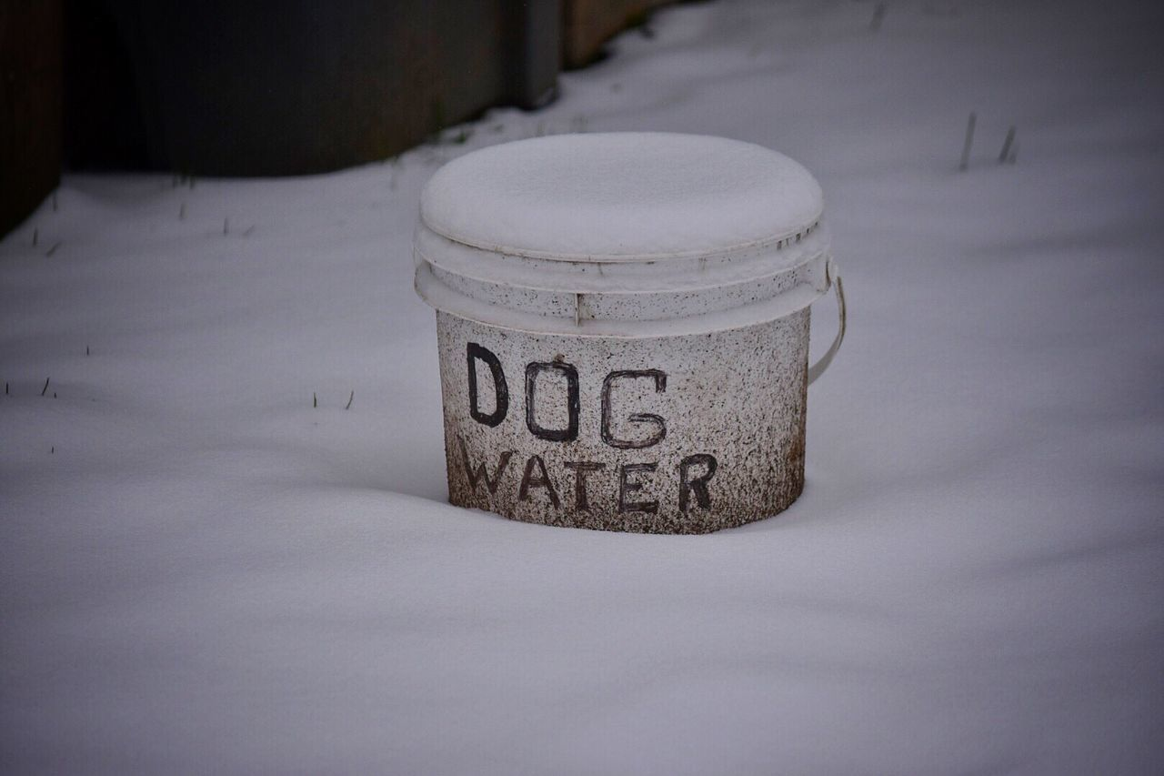 Communication Text Close-up No People Day Outdoors Snow ❄ Outdoor Photography Wintertime Snow Covered White Color Frozen Snow Winter Cold Temperature Bucket Dog Water Water Ice Pets Cold