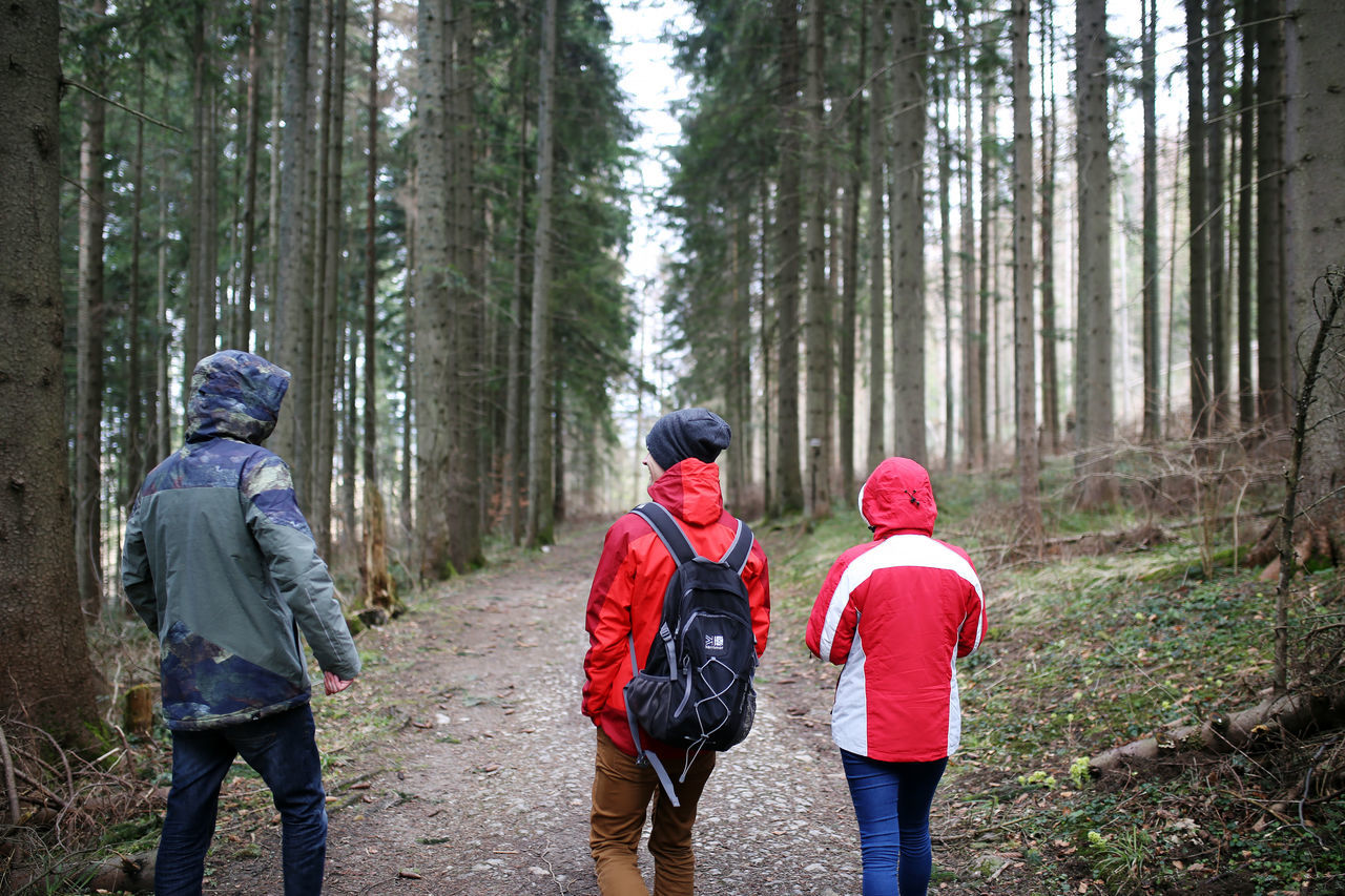 Forest Friendship Hiking Lifestyles Nature Outdoors Togetherness Tree Walking Warm Clothing WoodLand Young Adult
