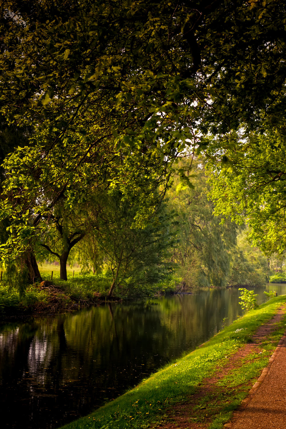Reflections On The Canal Water Beauty In Nature Cultures Day Deciduous Tree Environment Extreme Weather Lake Landscape Natural Parkland Nature No People Outdoors Social Issues Stream - Flowing Water Travel Destinations Tree Water