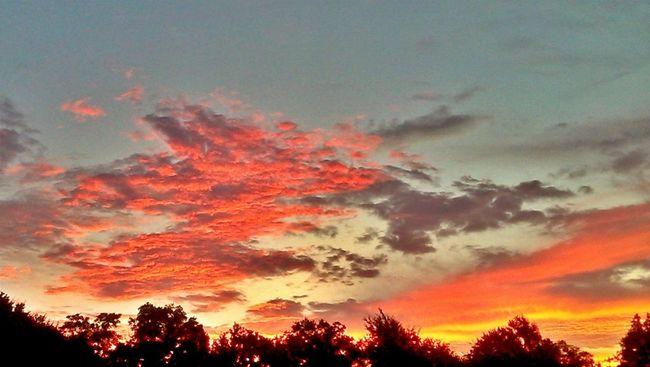 East Texas sunrise. Sunrise_sunsets_aroundworld Sunrise Sunset #sun #clouds #skylovers #sky #nature #beautifulinnature #naturalbeauty #photography #landscape