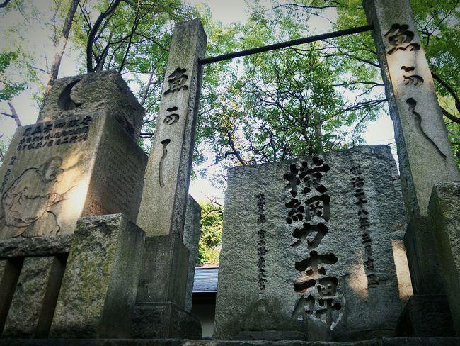 百年後、誰も僕のことを知らないのに、この場所はきっと変わらないんだ。 Hello World Japanese Traditional Tokyo,Japan Japanese Shrine Sumo 神社 相撲