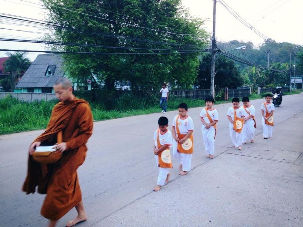 Buddhism TrueLittleMonk True Little Monk สามเณรปลูกปัญญาธรรม ปี ๓
