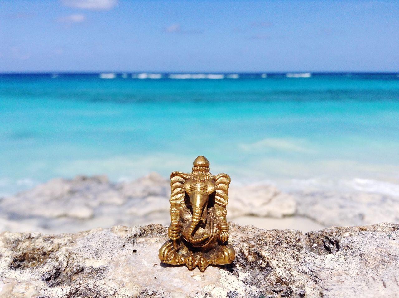 Beautiful stock photos of bahamas, Animal Representation, Art, Art And Craft, Beach