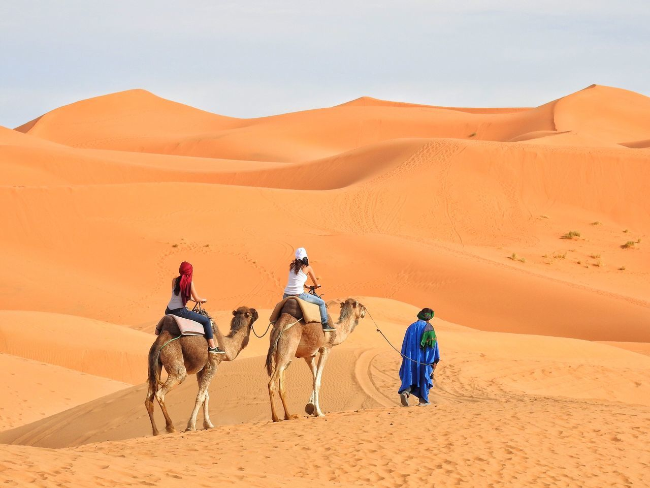 Beautiful stock photos of wüste, desert, sand dune, camel, sand