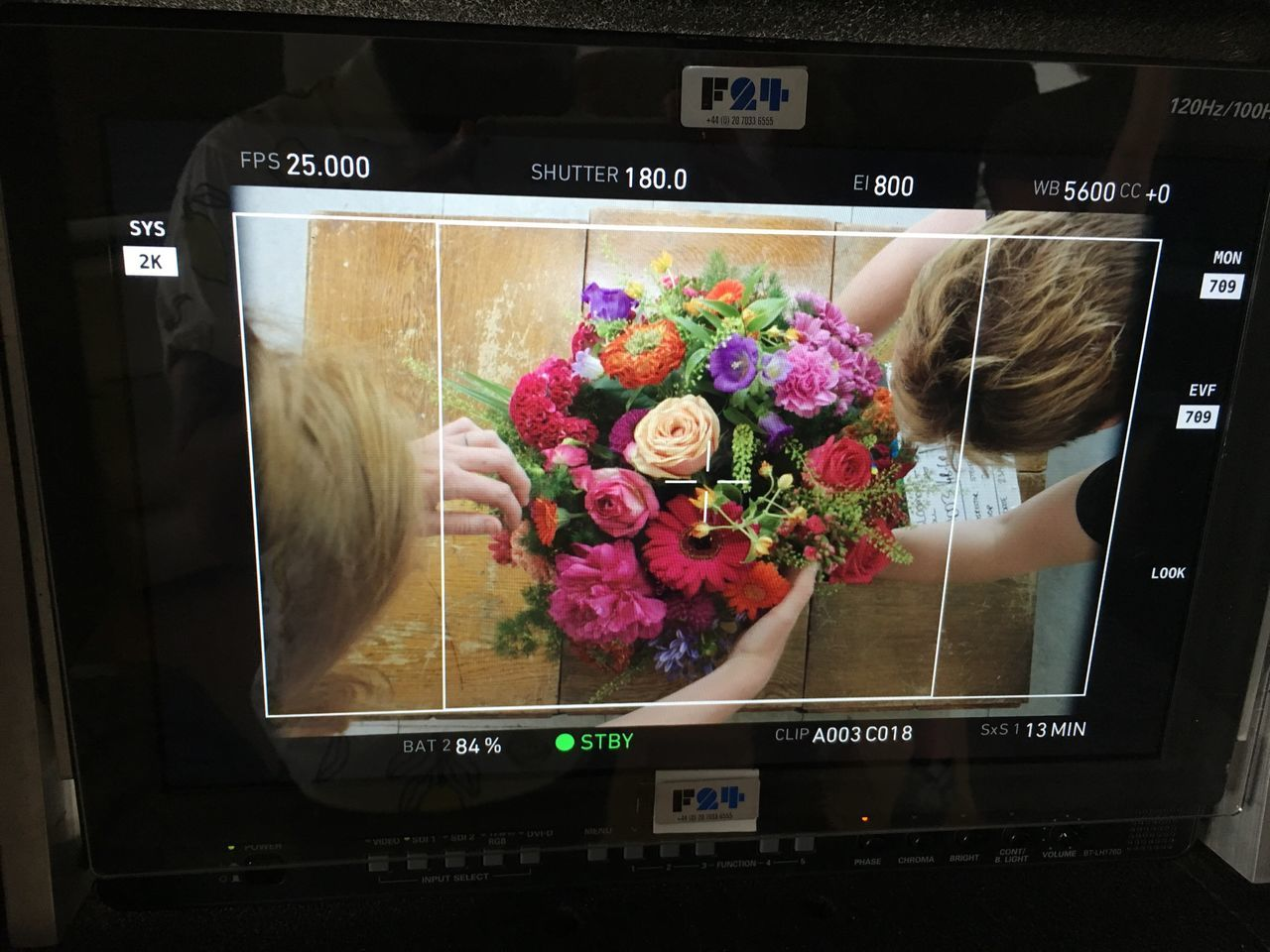 On set. Flower Bouquet Indoors  Close-up Technology No People Freshness Fragility Day Nature Film Camera