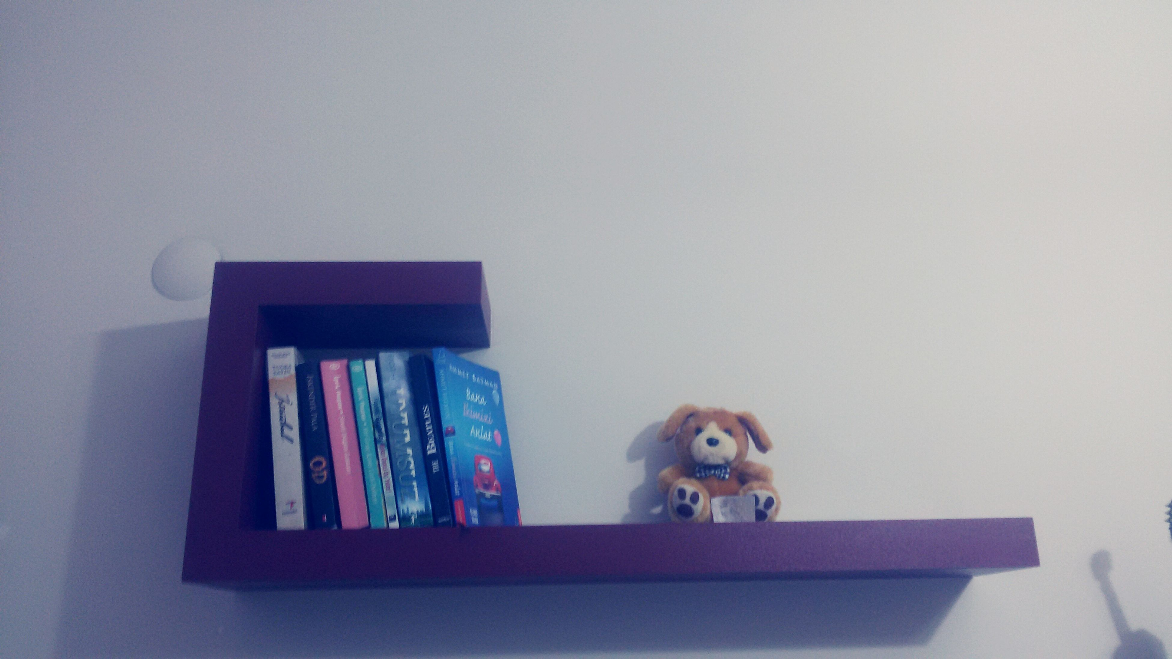 indoors, home interior, toy, copy space, built structure, animal themes, wall - building feature, animal representation, house, architecture, pets, window, one animal, childhood, domestic animals, wall, no people, art, low angle view, human representation