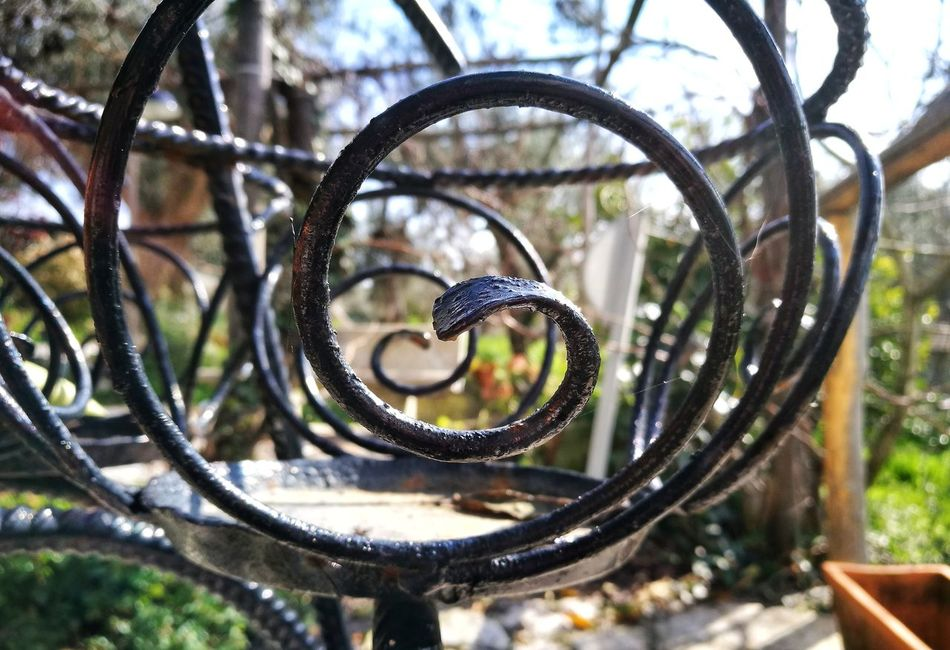 Emotion Swirl Metal Fioriera Old Details Vintage Vintage Stuff Close-up Nature Day Outdoors