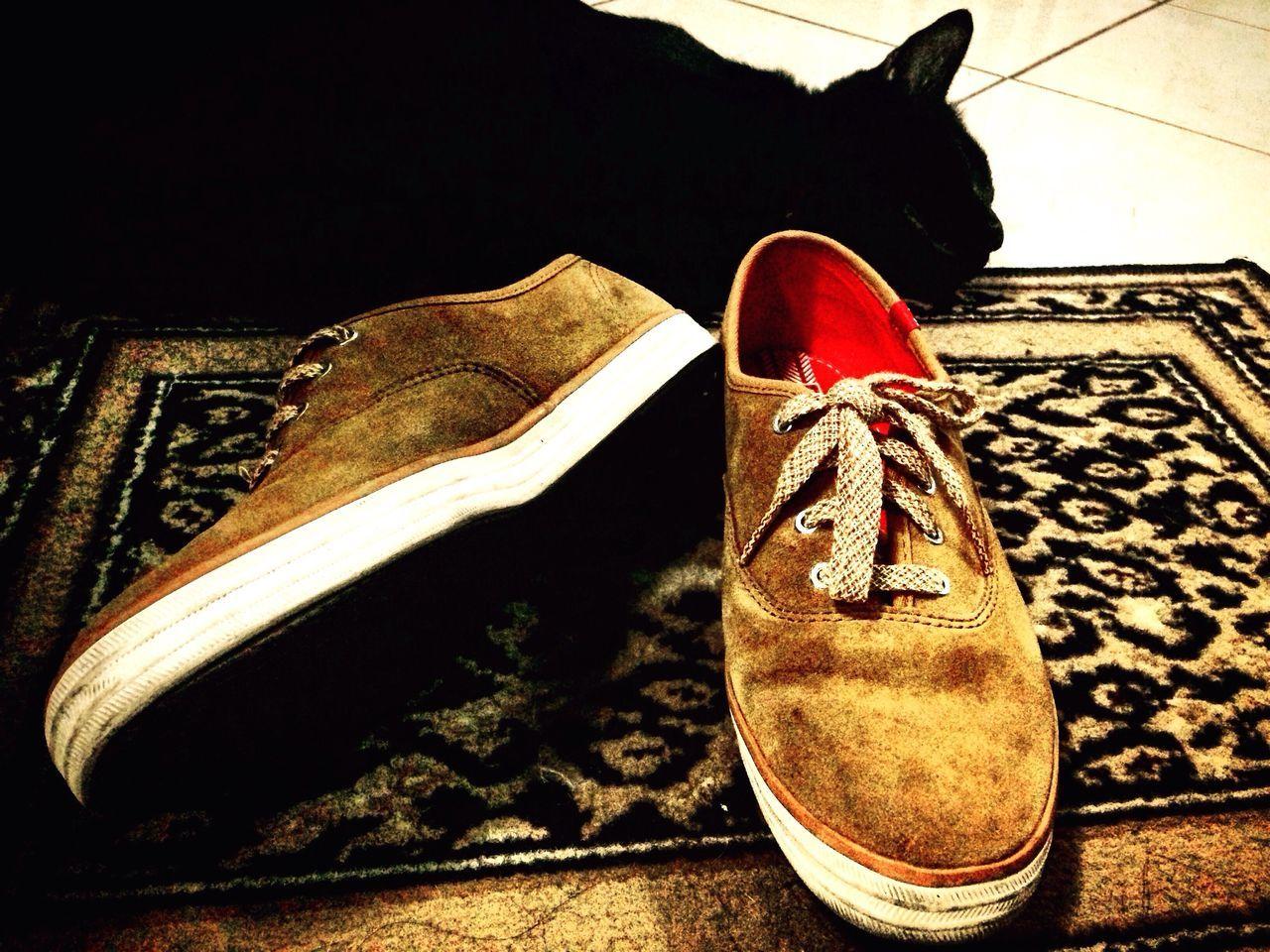 Black Cat Shoes Suède