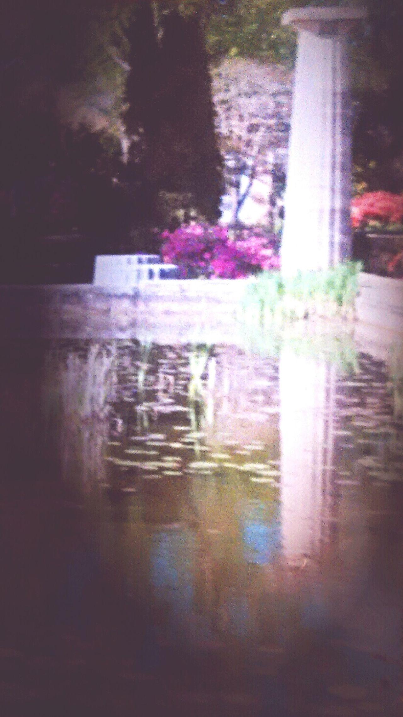 Wetumpka Alabama Jasmine Hill Gardens Gardenscapes Azelia Gardens Lotus Temple