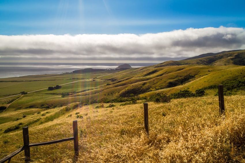 "he Big Sur Adventure Series - The Promised Land: Old Coast Road 4 ""Turn your face to the sun and the shadows fall behind you."" -Unknown Tranquil Scene Tranquility Fence Sky Landscape Beauty In Nature Nature Scenics Grass Idyllic Outdoors Non-urban Scene Field No People Cloud - Sky Day Mountain Pasture Rolling Hills Cloud Adventure Big Sur Horizon Over Water Scenic Lookout High Angle View Miles Away The Great Outdoors - 2017 EyeEm Awards"