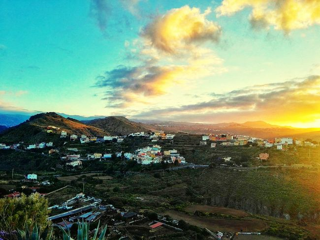 Colour Of Life tafira, gran canaria, canary islands made with huawei p8 Gran Canaria