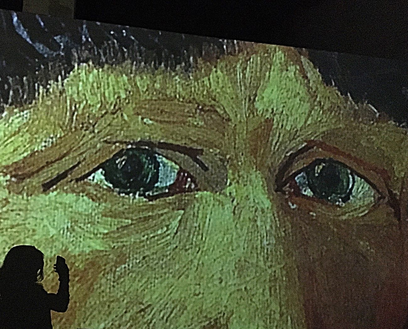 Vangogh Vangoghalive Close-up Human Body Part Indoors  Shadow Shadows & Lights Light