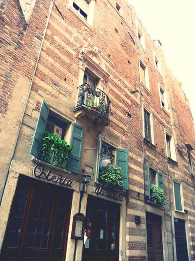 Italy Lago Di Garda Lake Garda Verona Verona Italy Building Exterior Architecture Low Angle View Window Built Structure Outdoors Residential Building Sky No People Balcony Day Ivy