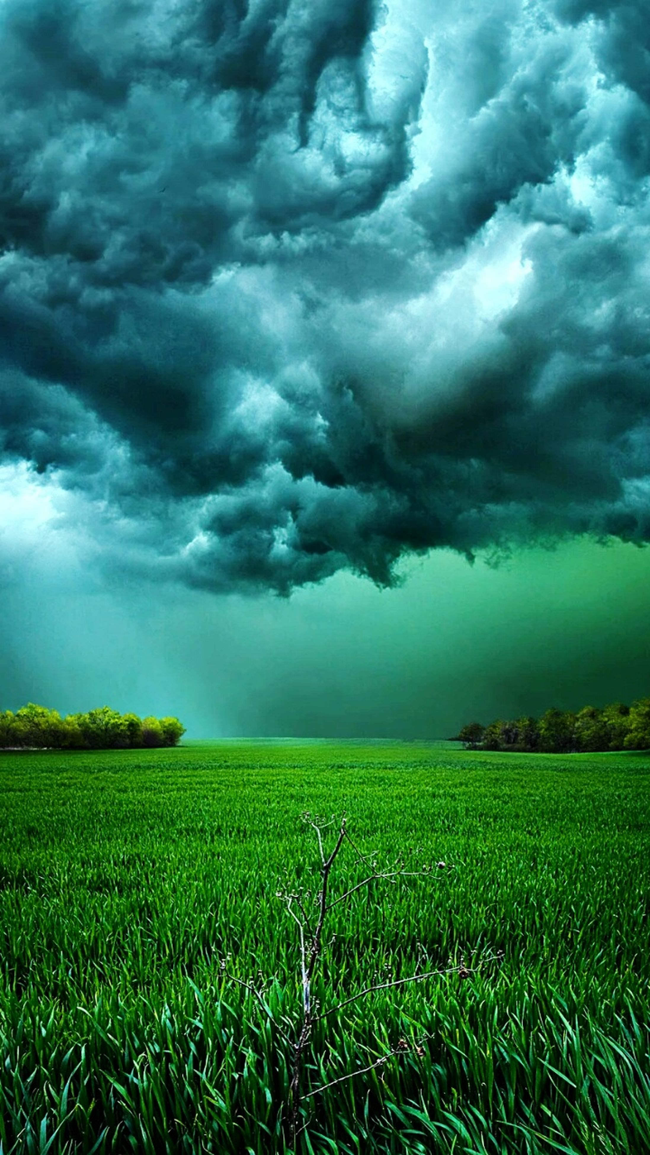 sky, field, landscape, cloud - sky, tranquil scene, cloudy, tranquility, scenics, beauty in nature, rural scene, grass, nature, agriculture, storm cloud, weather, green color, overcast, cloud, growth, farm