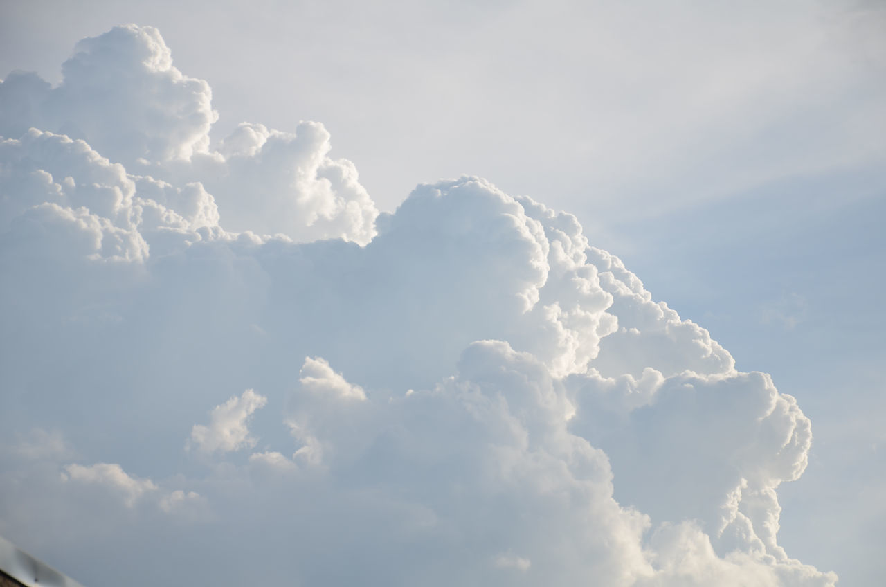 cloud - sky, fluffy, cloudscape, nature, white color, beauty in nature, sky, softness, backgrounds, sky only, tranquility, heaven, no people, scenics, day, low angle view, outdoors