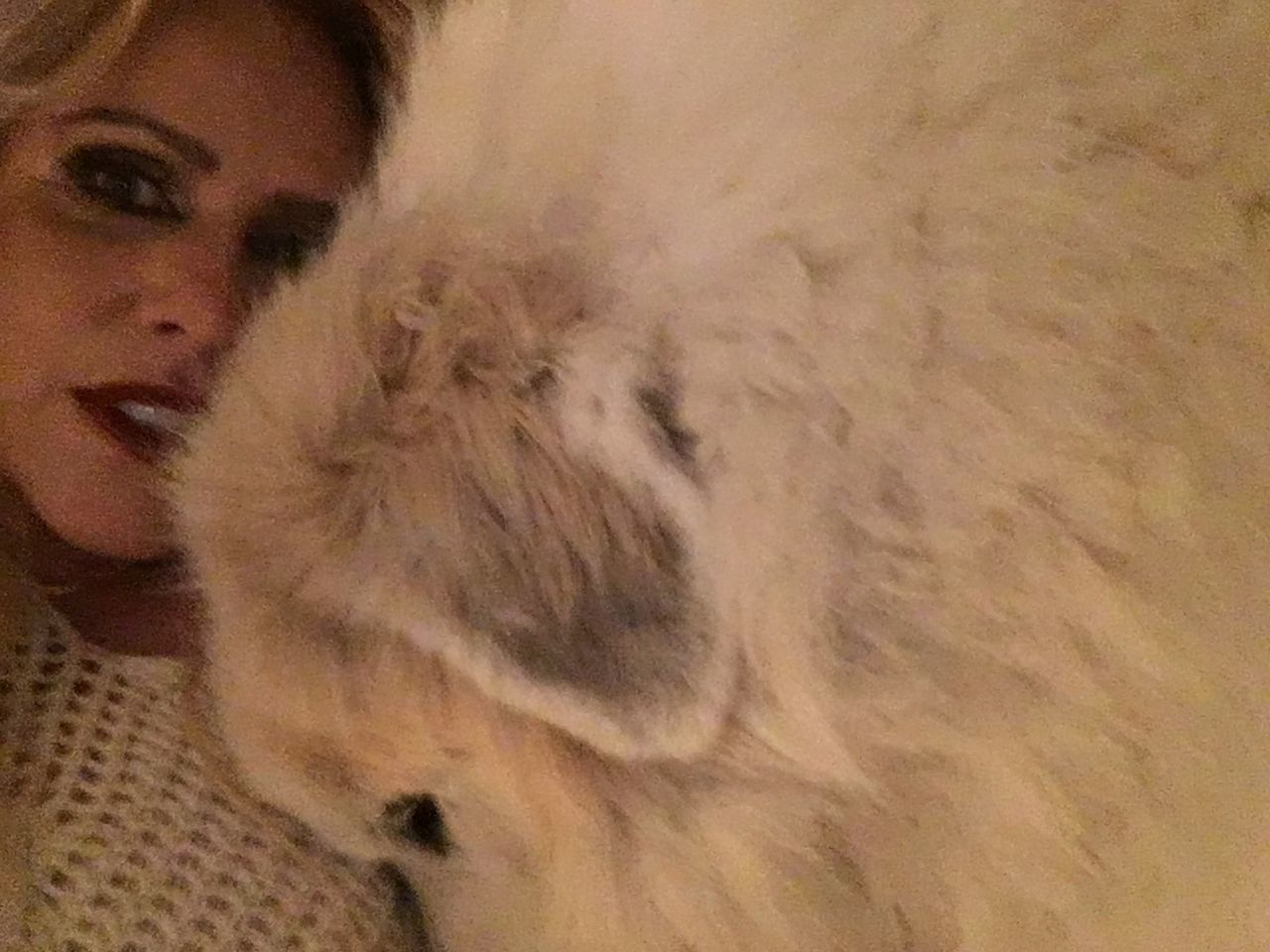 One Person Close-up Selfie With My Dog Beautiful Large White Dog Time To Cuddle Puppy Love One Animal Let's Go. Together. Domestic Animals White Color