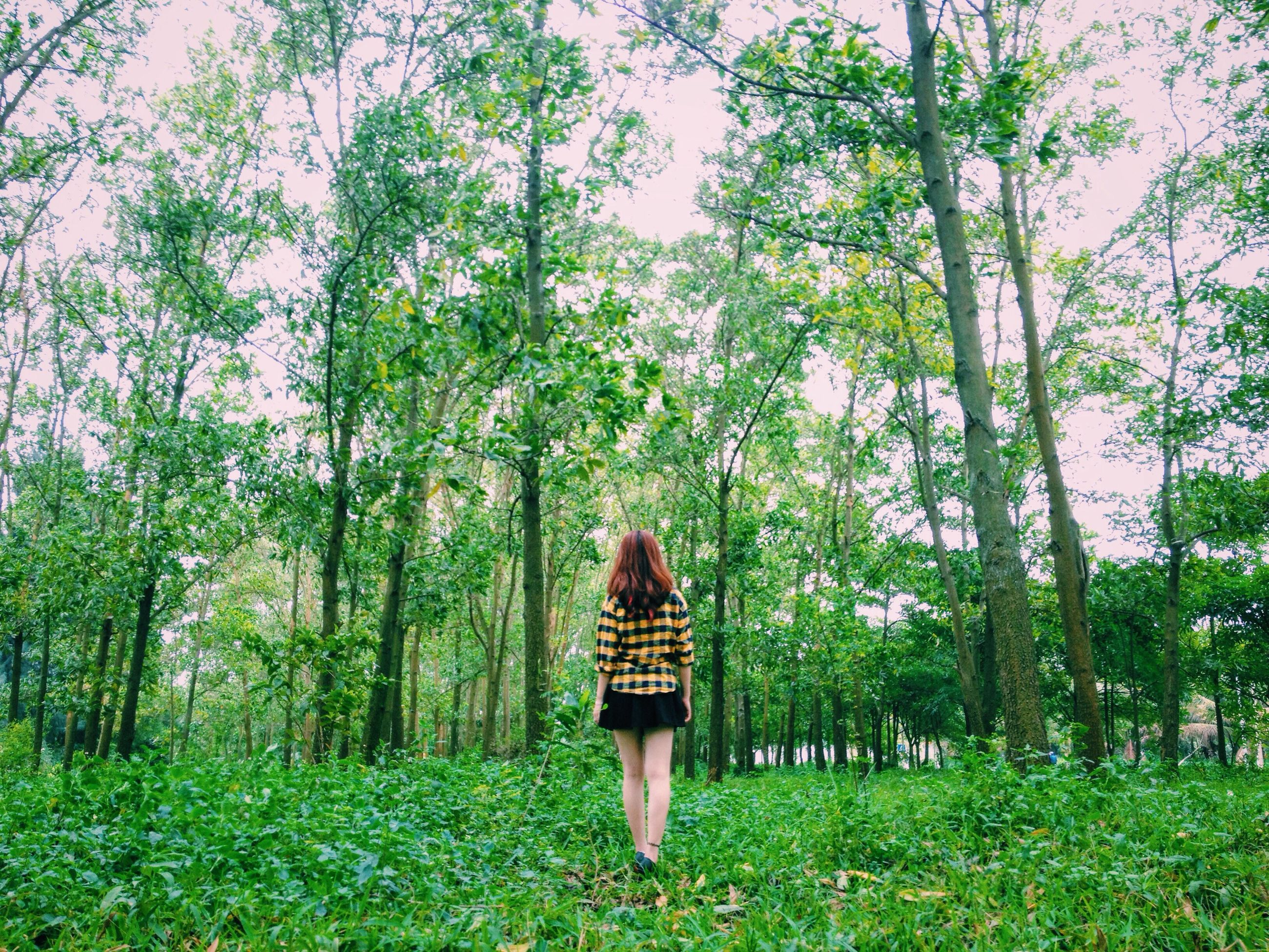 lifestyles, rear view, standing, tree, leisure activity, person, grass, casual clothing, full length, growth, green color, walking, plant, nature, field, young women, beauty in nature, tranquility