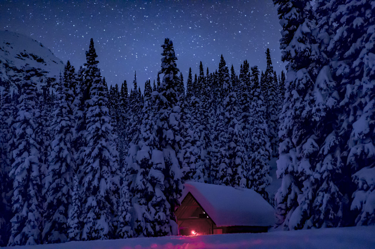 Astronomy Astrophotography Cabin Camping Chalet Cold Temperature Constellation Cottage Cozy Forest Galaxy Landscape Mountain Nature Night Outdoors Remote Sky Snow Space Star - Space Starry Tree Warm Winter
