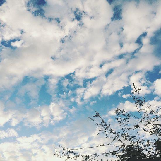 新鮮的空氣趕快吸,過幾天就吸不到了! Sky Cloud - Sky No People Outdoors