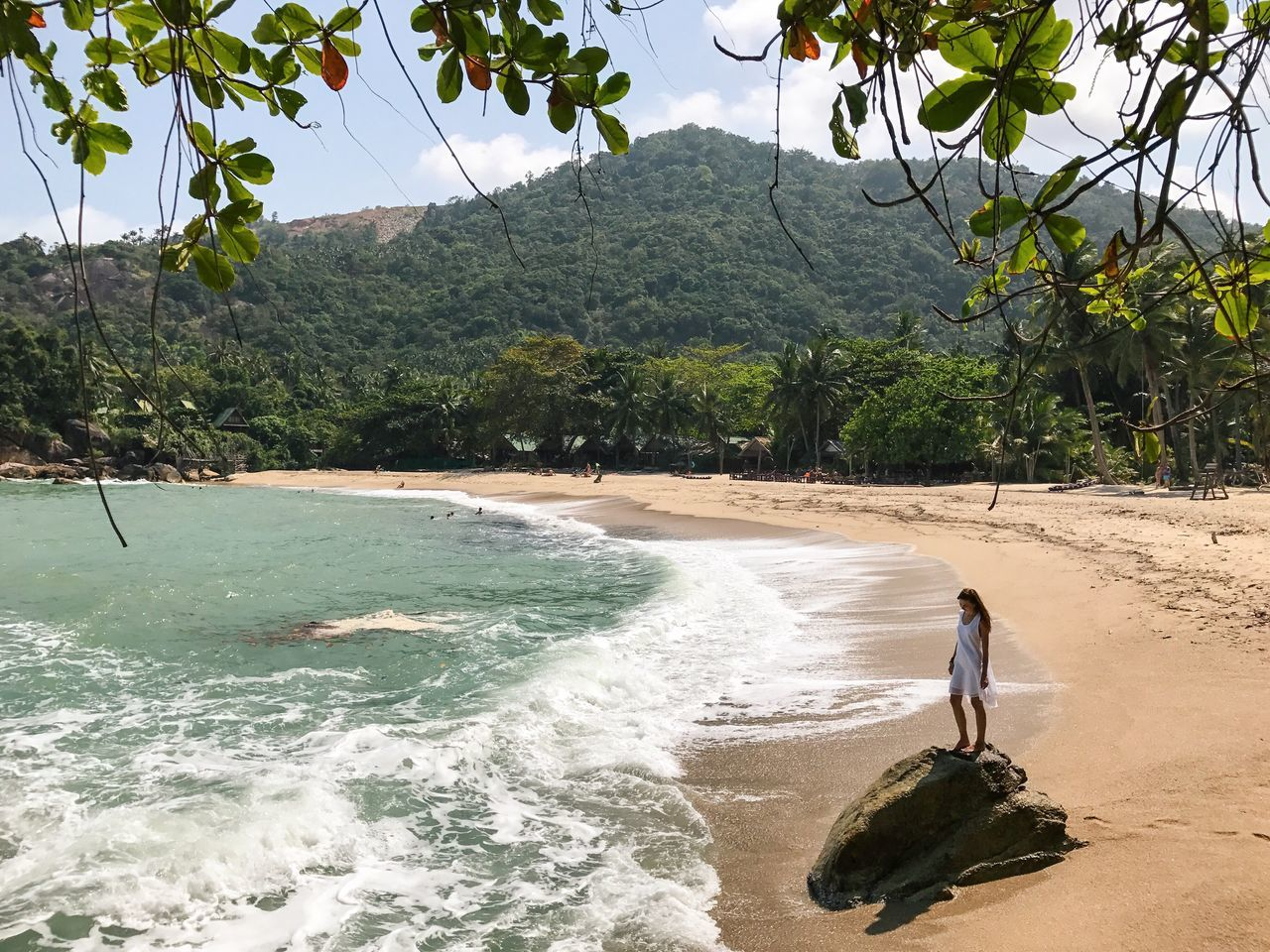 Tree Real People Full Length Beach One Person Nature Beauty In Nature Scenics Walking Sea Sand Outdoors Day Lifestyles Mountain Vacations Water Palm Tree Landscape One Woman Only Rock - Object Wave Thailand Koh Phangan Travel Destinations