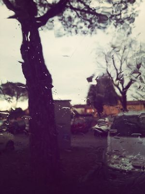 raining day at Savignano sul Rubicone by Giorgia
