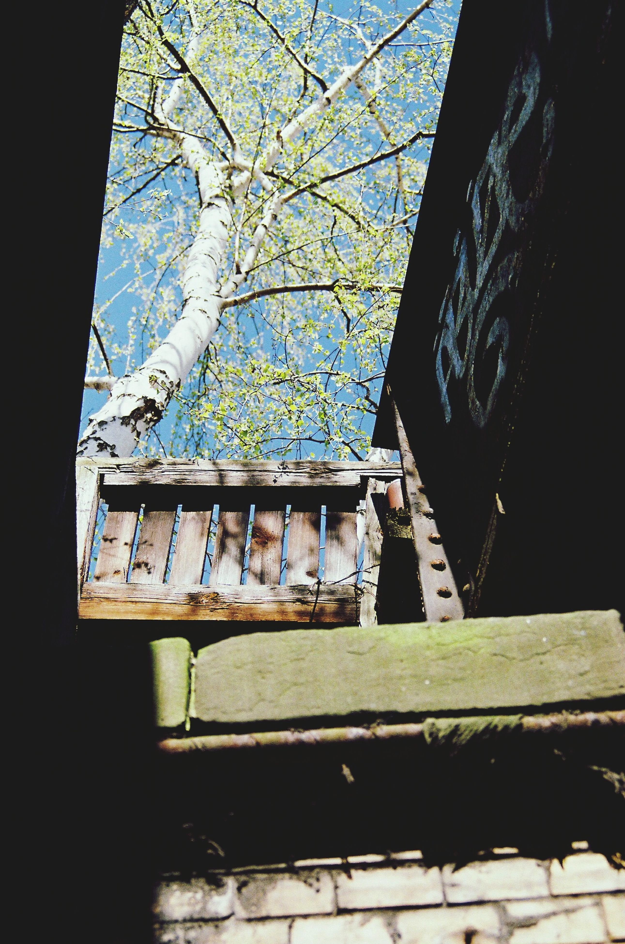 architecture, built structure, window, abandoned, building exterior, old, house, obsolete, low angle view, damaged, sky, wood - material, run-down, weathered, deterioration, day, tree, indoors, no people, wall - building feature